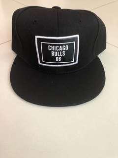 Chicago Bulls 66