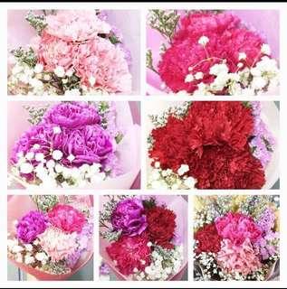 Huamama Carnation