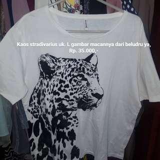 Kaos stradivarious macan