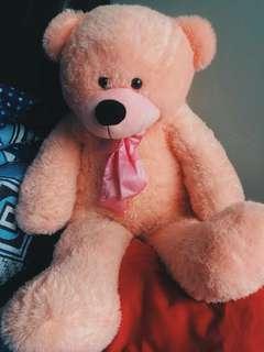 Teddy bear murah