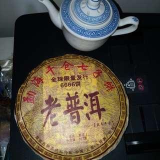 茶葉  茶壶16.5x11mm左右
