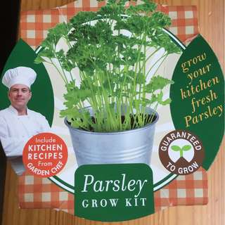 Parsley Grow Kit