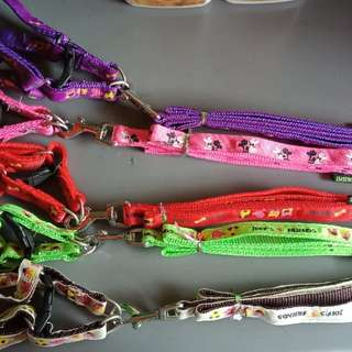 Dog Harness with Lead