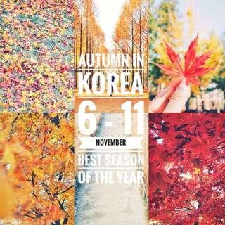 Open trip korea (sangat murah) dijamin!