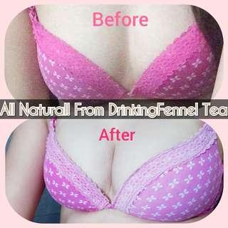 Breast Enlarger Organic Fennel Tea