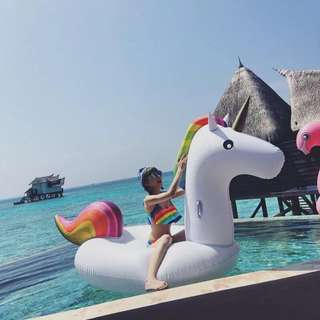 Unicorn Floater