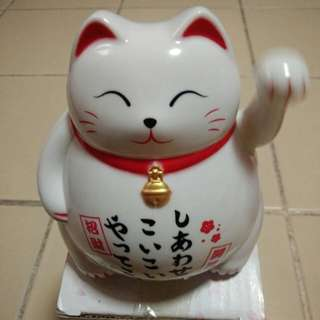 Welcome cai cat