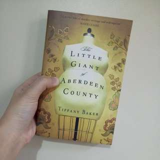 The Litte Giant Of Aberdeen County