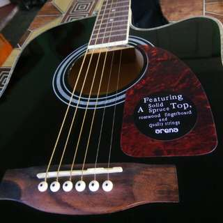 Arena Acoustic Guitar (Open for Swap)