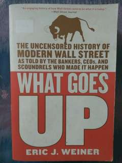 Uncensored History of Modern Wall Street: What Goes Up by Eric Weiner