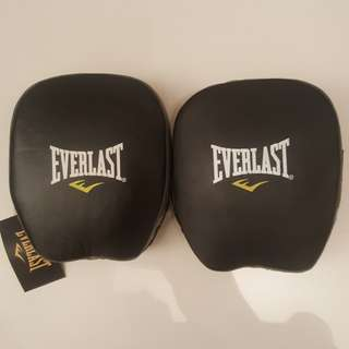 Everlast boxing pads
