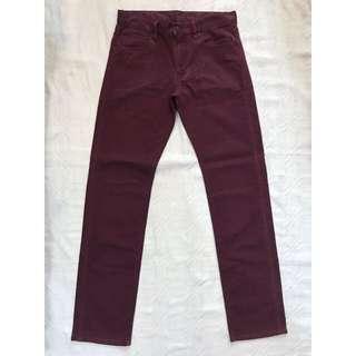 Uniqlo Maroon Pants