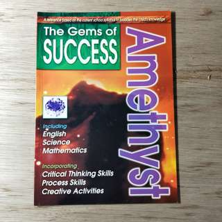 The Gems Of Success Magazine Amethyst
