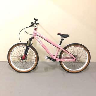 Custom Ladies Bicycle (Grossman Project)
