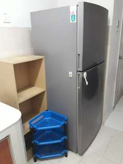 Samsung Fridge 410L (Malay User)