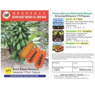 Malaysia 1 Foot Papaya Seeds