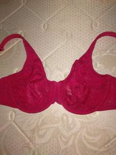 40dd CACIQUE® red wired lace embroidered bra