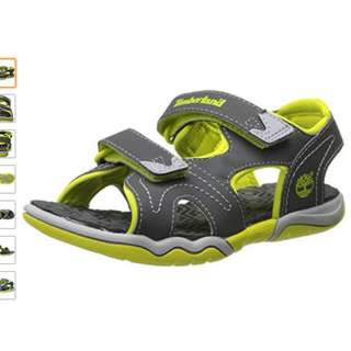 Brand new with box Timberland Adventure Seeker Two-Strap Sandal (Toddler/Little Kid)