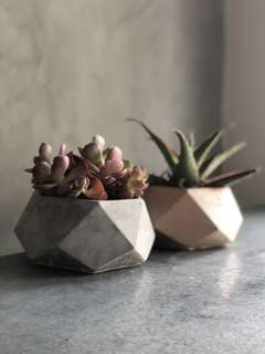 Sted Geometric Concrete Planter