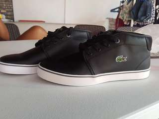 Original Lacoste Shoes from US!