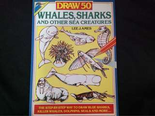 Drawing book (sea creatures)