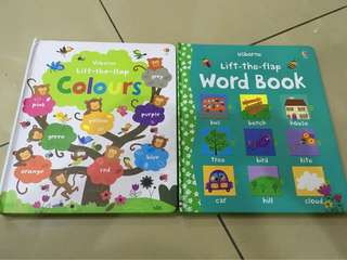 Usborne Flip-the-flap board books (2 books)