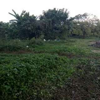 Lot for sale 800sqm in Magdalena Laguna