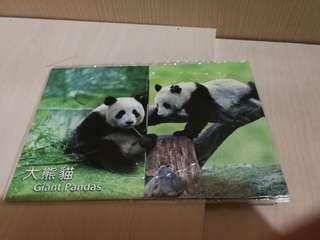 Hong Kong Post Stamp 香港郵政郵票套摺大熊貓giant panda
