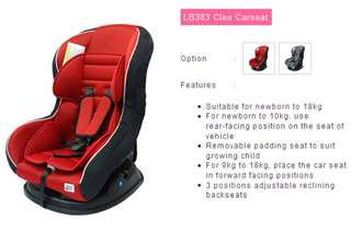Baby Car Seat sweet cherry