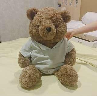 Big Teddy Bear • teddy house •