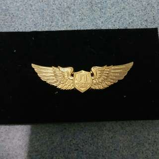 JIU TIAN flight school cpl wings