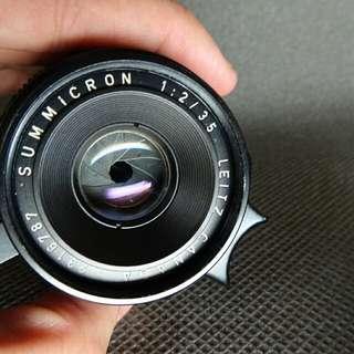 35mm summicron + leica hood