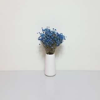 [For Rent] White Vase with Blue Baby Breathe S012
