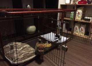 日本進口雙門豪華大型狗籠約67cm*146cm*70cm(日本品質、無毒塗料,毛小孩帝寶)