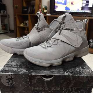 LeBron 14 grey out