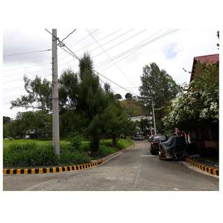 Residential Lot for Sale at Blue Mountains Antipolo.