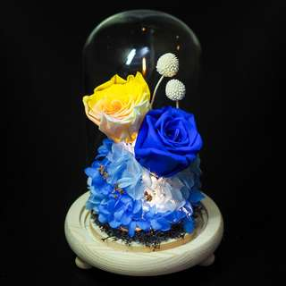 Yellow Blue Preserved Rose Dome