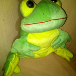 Big soft frog