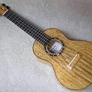 UKULELE PLAYING LESSONS (Low-priced rates)