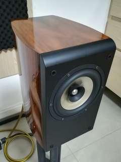 Tuolihao Full Rang Audiophile Speaker