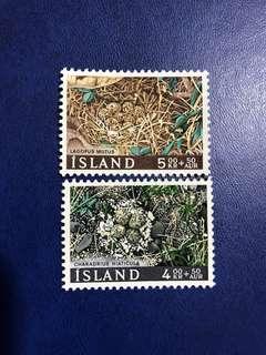 冰島1967 鳥類保護 鳥巢和鳥蛋 2全新