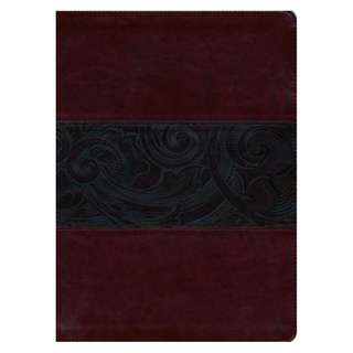 Free/Giveaway: HCSB Study Bible, Large Print, Mahogany LeatherTouch