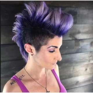 Ash Violet Hair Color Dye Set