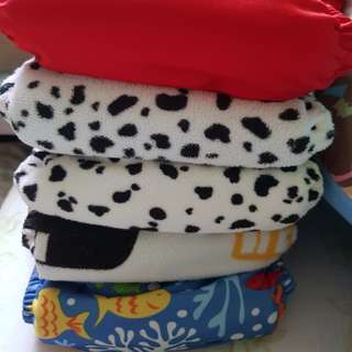PreLoved Cloth Diaper with 2 Charcoal Inserts