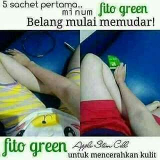 FITTO GREEN