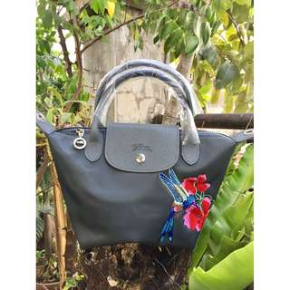 Longchamp (small)