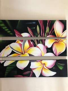 Fragipani Canvas