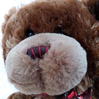 加拿大Baby GANZ 長毛絨泰迪熊