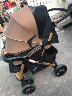 Stroller/floor chair/car seat