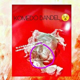 Masker Komedo Bandel